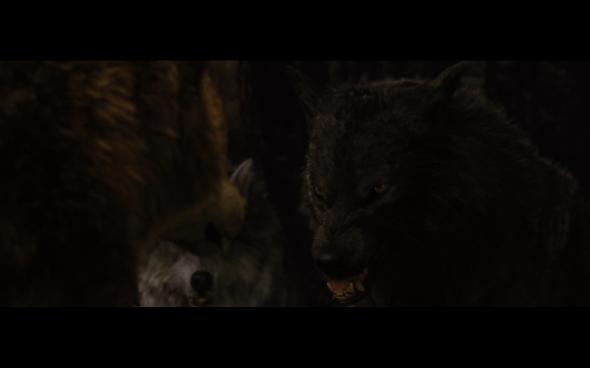 The Twilight Saga Breaking Dawn Part 1 - 1236