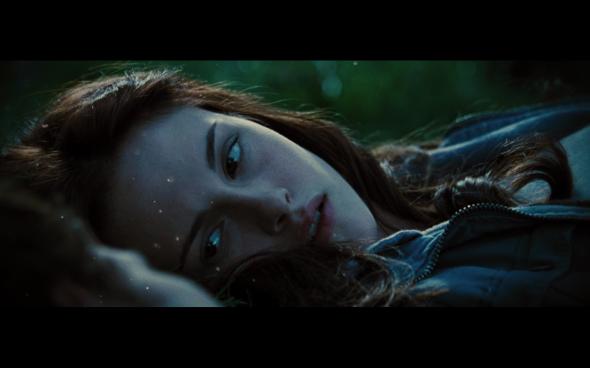The Twilight Saga Breaking Dawn Part 1 - 1272