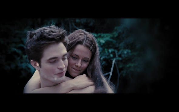 The Twilight Saga Breaking Dawn Part 1 - 1274