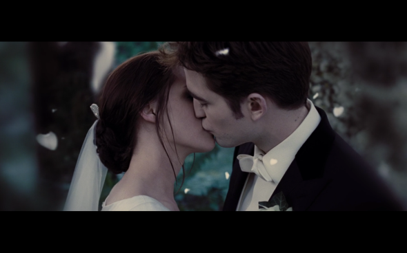 The Twilight Saga Breaking Dawn Part 1 - 1275