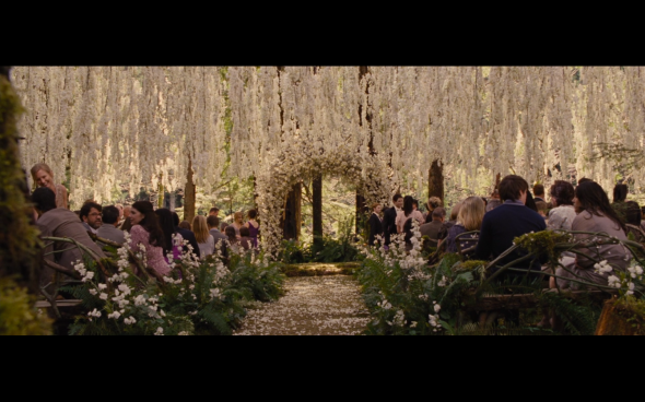 The Twilight Saga Breaking Dawn Part 1 - 155