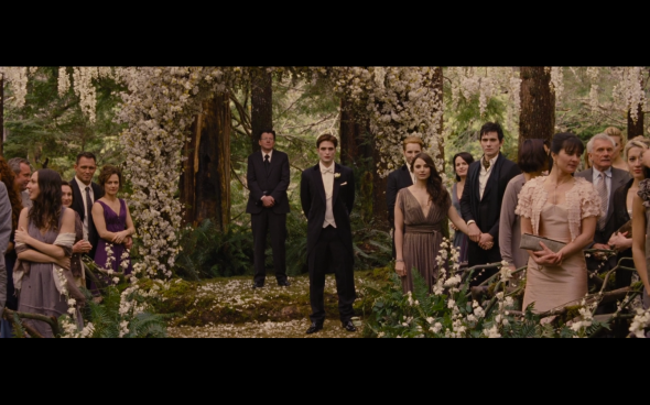 The Twilight Saga Breaking Dawn Part 1 - 185