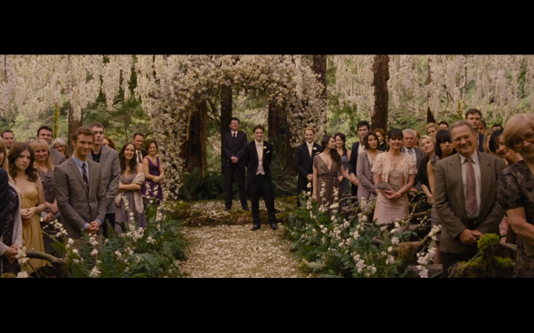 The Twilight Saga Breaking Dawn Part 1 - 191