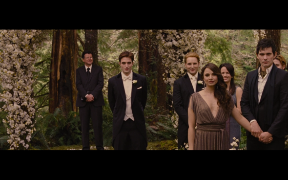 The Twilight Saga Breaking Dawn Part 1 - 192