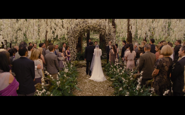 The Twilight Saga Breaking Dawn Part 1 - 194