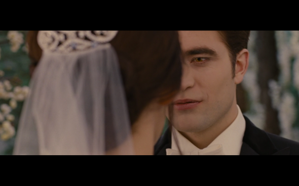The Twilight Saga Breaking Dawn Part 1 - 203