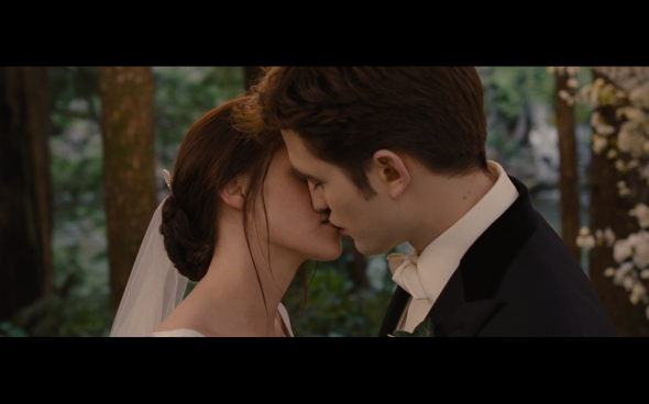 The Twilight Saga Breaking Dawn Part 1 - 206