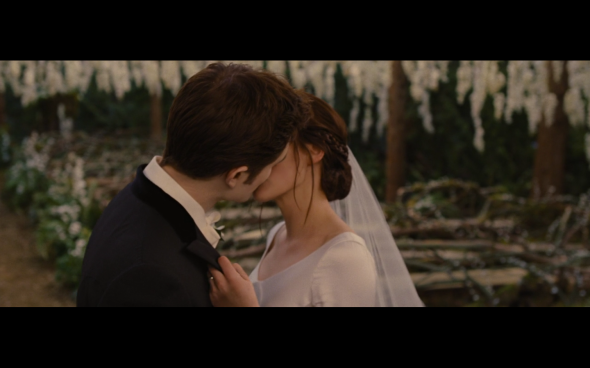 The Twilight Saga Breaking Dawn Part 1 - 208