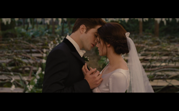 The Twilight Saga Breaking Dawn Part 1 - 209