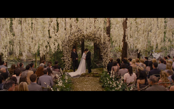 The Twilight Saga Breaking Dawn Part 1 - 210