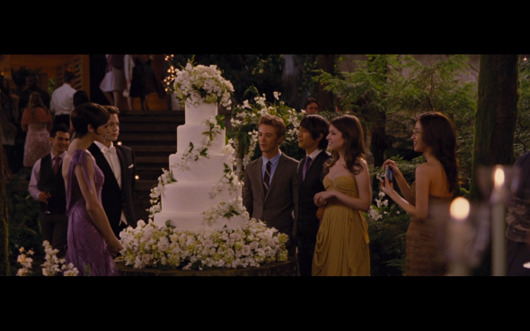 The Twilight Saga Breaking Dawn Part 1 - 220