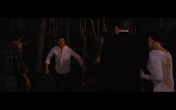 The Twilight Saga Breaking Dawn Part 1 - 331