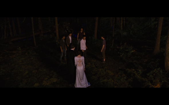 The Twilight Saga Breaking Dawn Part 1 - 335