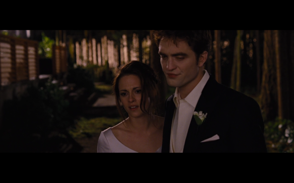The Twilight Saga Breaking Dawn Part 1 - 336