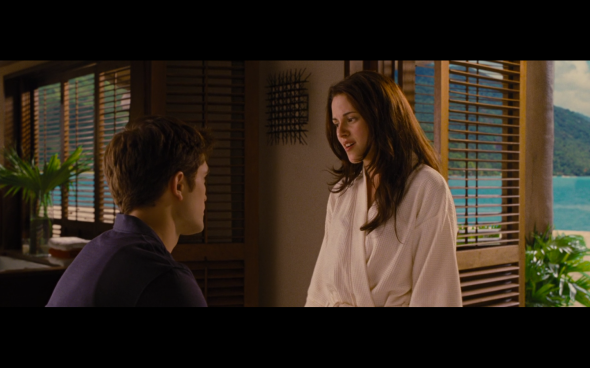 The Twilight Saga Breaking Dawn Part 1 - 503