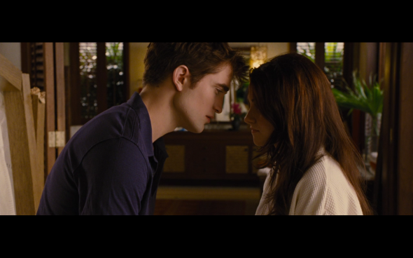 The Twilight Saga Breaking Dawn Part 1 - 506