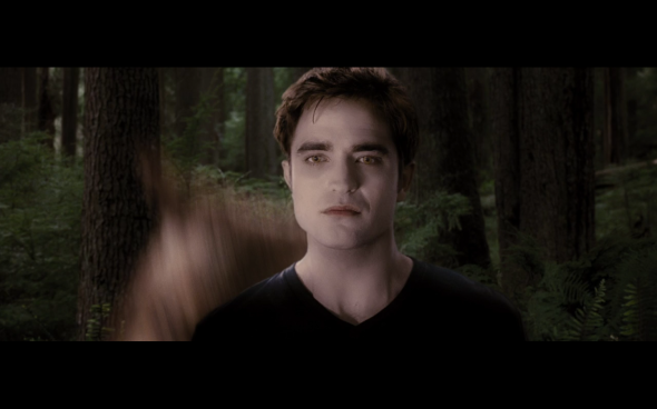 The Twilight Saga Breaking Dawn Part 1 - 577