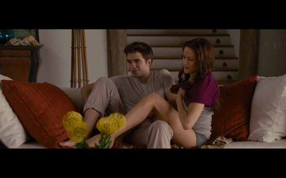 The Twilight Saga Breaking Dawn Part 1 - 596