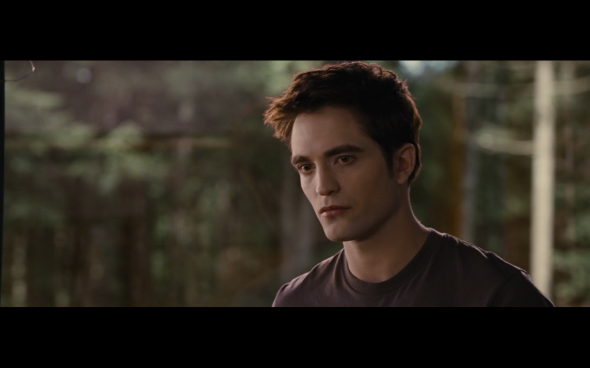 The Twilight Saga Breaking Dawn Part 1 - 704