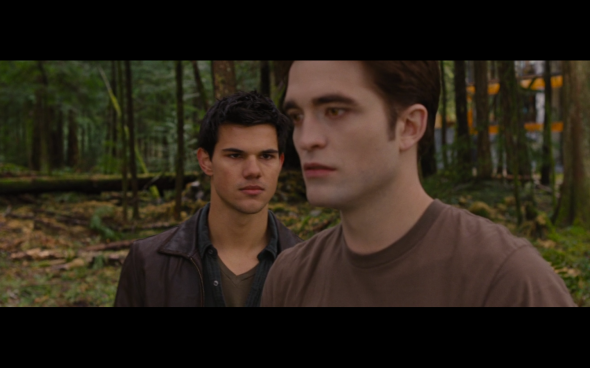 The Twilight Saga Breaking Dawn Part 1 - 712