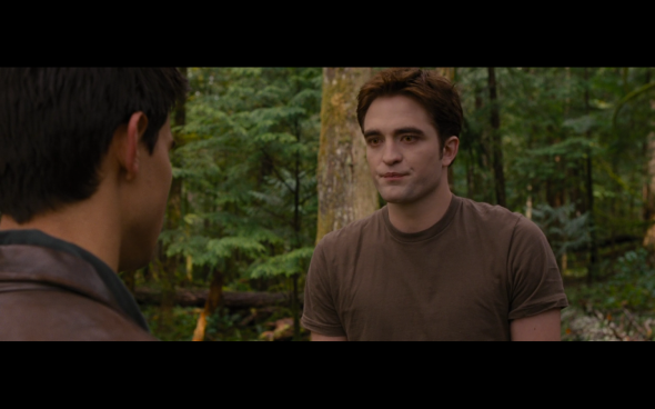 The Twilight Saga Breaking Dawn Part 1 - 713