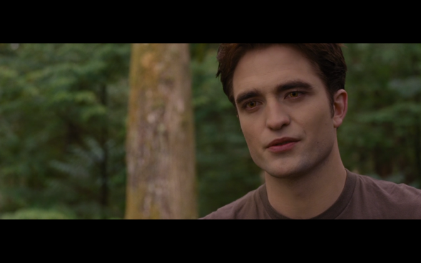 The Twilight Saga Breaking Dawn Part 1 - 715