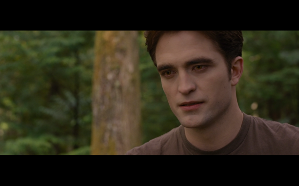 The Twilight Saga Breaking Dawn Part 1 - 717