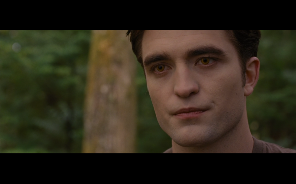 The Twilight Saga Breaking Dawn Part 1 - 718