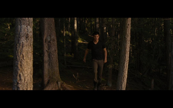 The Twilight Saga Breaking Dawn Part 1 - 813