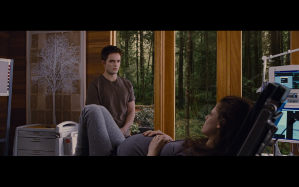 The Twilight Saga Breaking Dawn Part 1 - 886