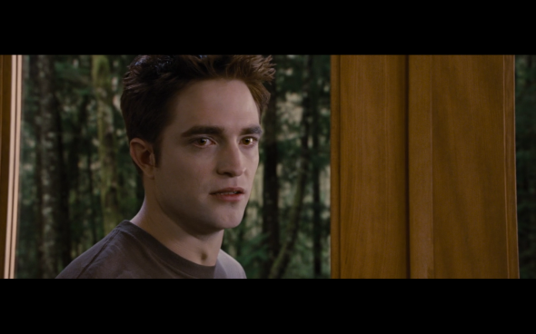 The Twilight Saga Breaking Dawn Part 1 - 888