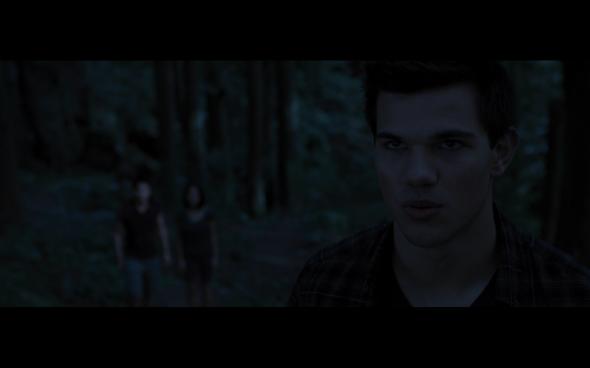 The Twilight Saga Breaking Dawn Part 1 - 987