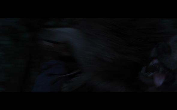 The Twilight Saga Breaking Dawn Part 1 - 994