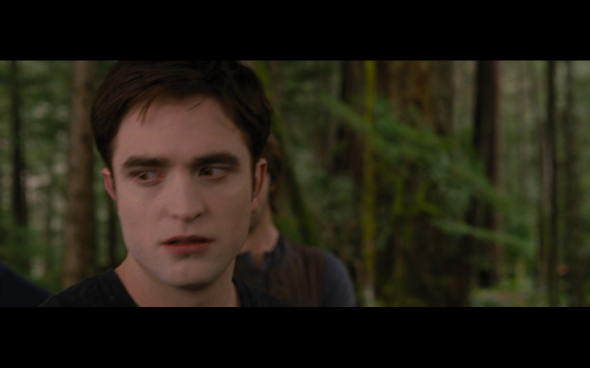 The Twilight Saga Breaking Dawn Part 2 - 1010