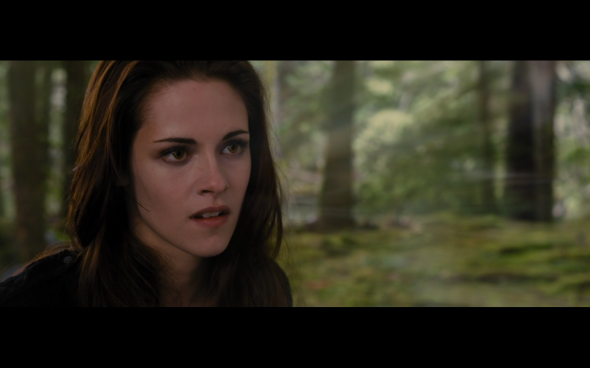 The Twilight Saga Breaking Dawn Part 2 - 1017