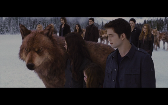The Twilight Saga Breaking Dawn Part 2 - 1195