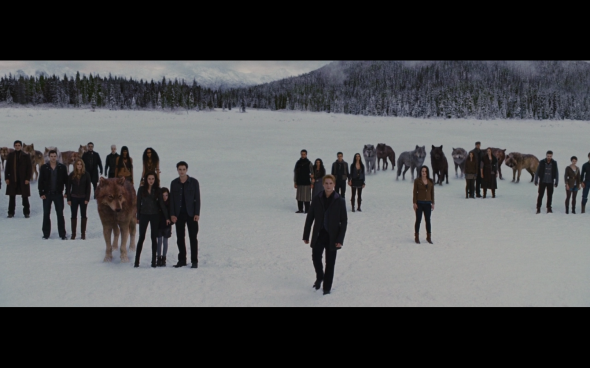 The Twilight Saga Breaking Dawn Part 2 - 1201