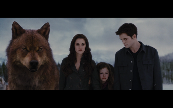 The Twilight Saga Breaking Dawn Part 2 - 1205