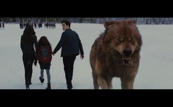 The Twilight Saga Breaking Dawn Part 2 - 1255