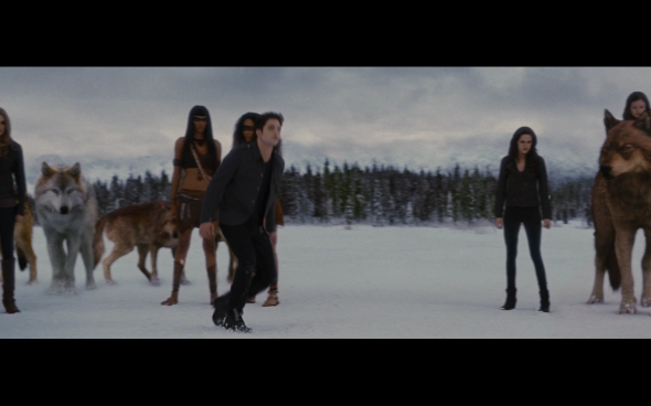 The Twilight Saga Breaking Dawn Part 2 - 1300