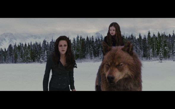 The Twilight Saga Breaking Dawn Part 2 - 1302