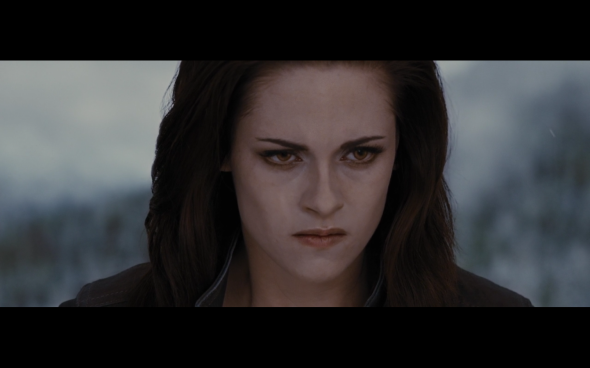 The Twilight Saga Breaking Dawn Part 2 - 1336