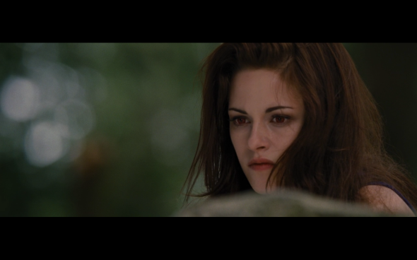The Twilight Saga Breaking Dawn Part 2 - 139