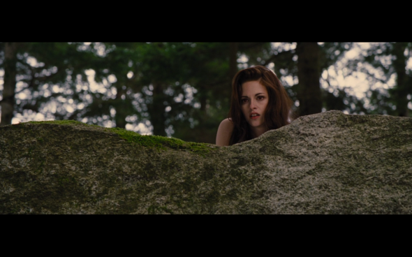 The Twilight Saga Breaking Dawn Part 2 - 142