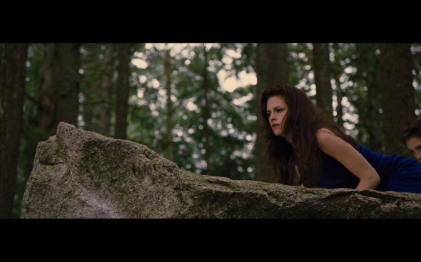 The Twilight Saga Breaking Dawn Part 2 - 144