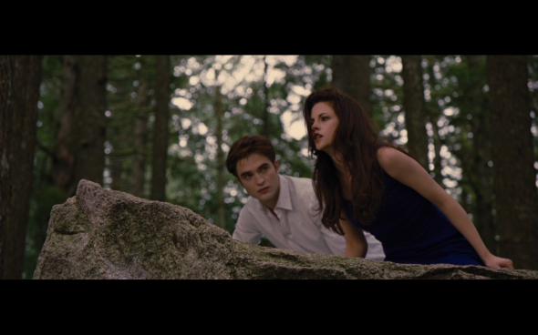 The Twilight Saga Breaking Dawn Part 2 - 150