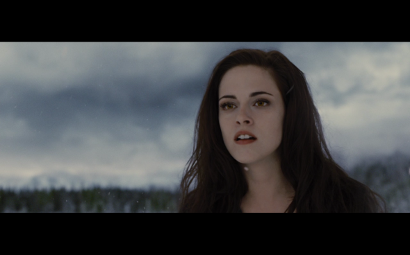 The Twilight Saga Breaking Dawn Part 2 - 1580