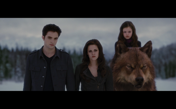 The Twilight Saga Breaking Dawn Part 2 - 1795
