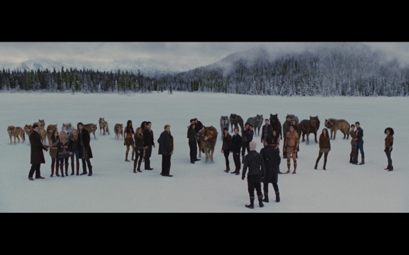 The Twilight Saga Breaking Dawn Part 2 - 1820
