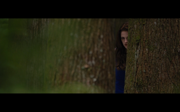 The Twilight Saga Breaking Dawn Part 2 - 184